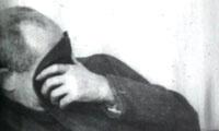 1904, N. 36