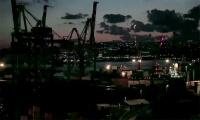 Posidonia - I fondali della metropoli