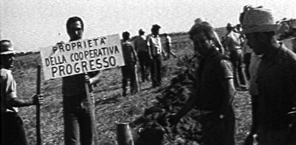Terra! Occupazione di braccianti a Cirò Marina, Calabria 1975